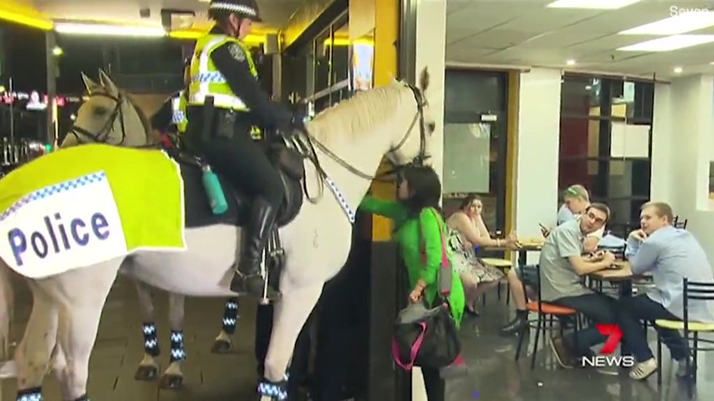 Woman punches Police horse picture: seven METROGRAB