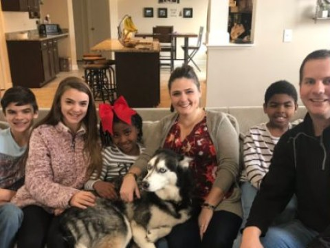 Family's beloved pet husky is returned four years after he was stolen