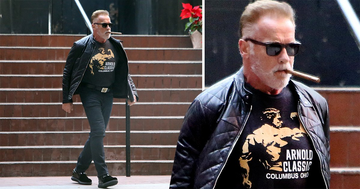 Only Arnold Schwarzanegger can look this cool wearing his own face on a T-shirt