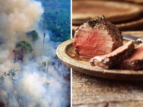 Cutting back on red meat 'will save the planet'