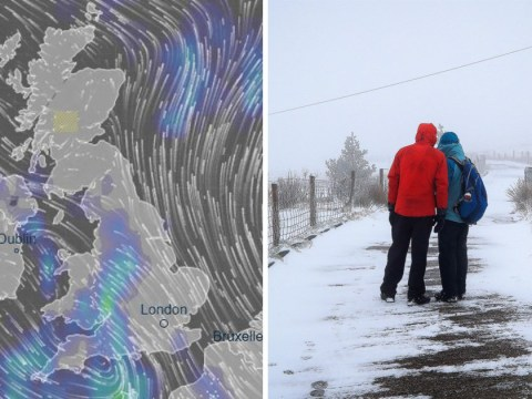 'The cold is here to stay' Met Office warns as temperatures plunge below -9°C