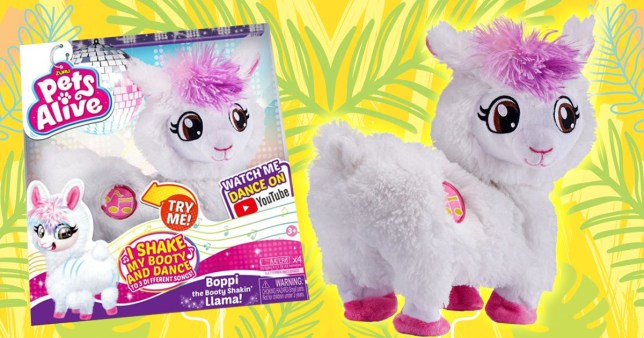 Parents across the country will soon be pestered for the must-have toy of 2019 - a robotic llama that dances to music and even TWERKS