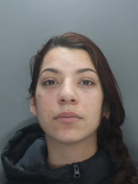 Luminata Dumitru, 20, admitted robbery and two counts of burglary and was locked up for three years Credit: Liverpool Echo