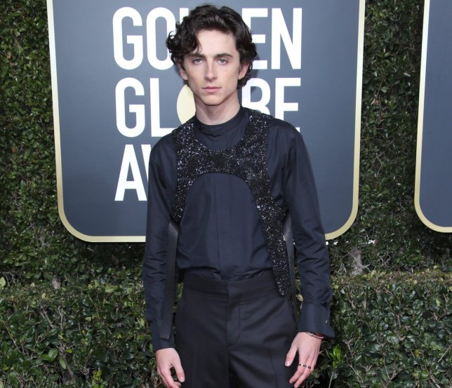 Mandatory Credit: Photo by Matt Baron/BEI/REX (10048067lx) Timothee Chalamet 76th Annual Golden Globe Awards, Arrivals, Los Angeles, USA - 06 Jan 2019