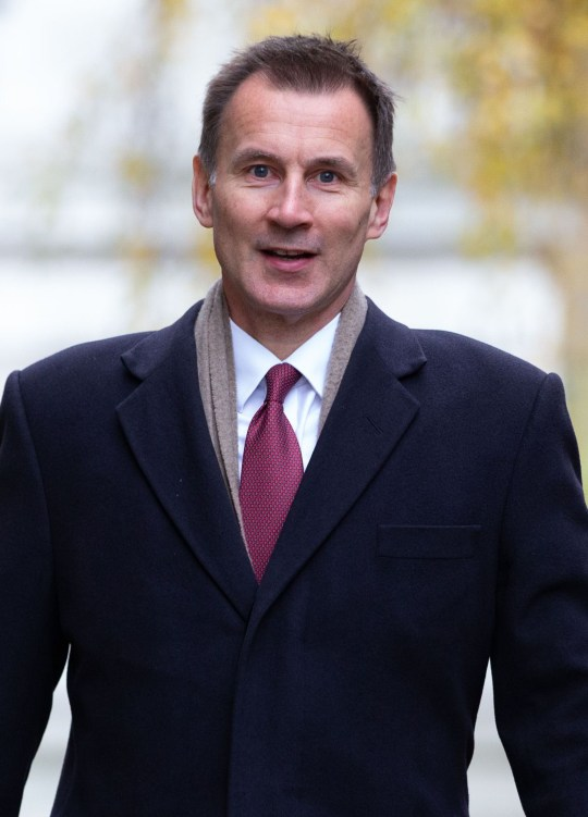 Mandatory Credit: Photo by Mark Thomas/REX/Shutterstock (10002782a) Jeremy Hunt, Secretary of State for Foreign and Commonwealth Affairs, at Downing Street. Politicians at Downing Street, London, UK-28 Nov 2018