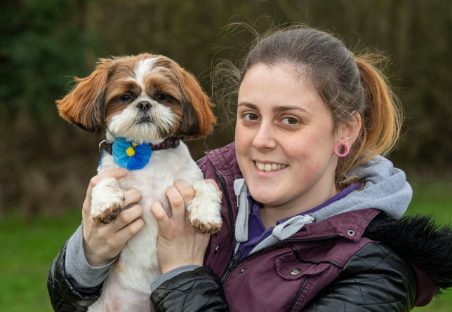 BNPS.co.uk (01202 558833) Pic: PhilYeomans/BNPS Plucky Bertie with rescue centre worker Melissa Bull. Meet Bertie the bow-legged Shih-Tzu puppy... A rescue centre has launched a crowd funding page to raise the ?4,000 needed to help him run around again. One year old Bertie has been abandoned by his owners who couldn't afford the cost of his life changing operations, but Ardley rescue centre boss Annabelle Weir from Bicester in Oxfordshire is determined to give bow-legged Bertie a second chance.
