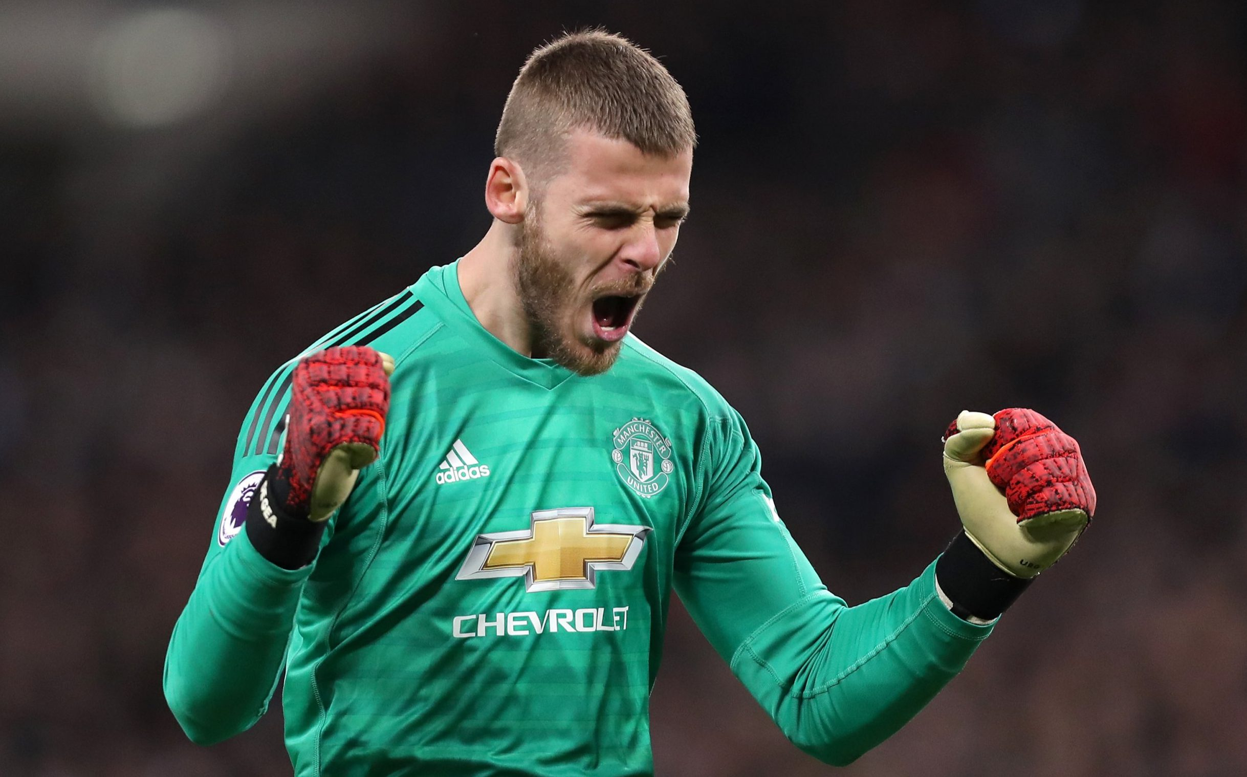 LONDON, ENGLAND - JANUARY 13: David De Gea of Manchester United celebrates his sides first goal during the Premier League match between Tottenham Hotspur and Manchester United at Wembley Stadium on January 13, 2019 in London, United Kingdom. (Photo by Tottenham Hotspur FC/Tottenham Hotspur FC via Getty Images)