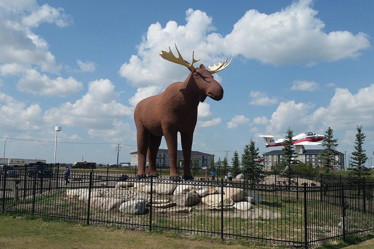 Gofundme www.gofundme.com/mac-the-moose