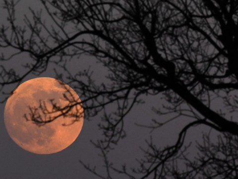 What is a supermoon and when is the next one?