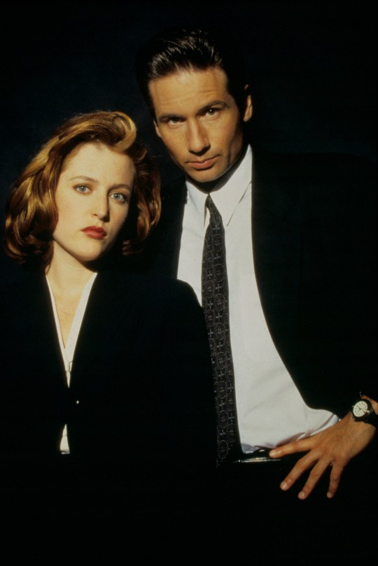 Editorial use only. No book cover usage. Mandatory Credit: Photo by Moviestore/REX/Shutterstock (1624813a) The X-files , Gillian Anderson, David Duchovny Film and Television