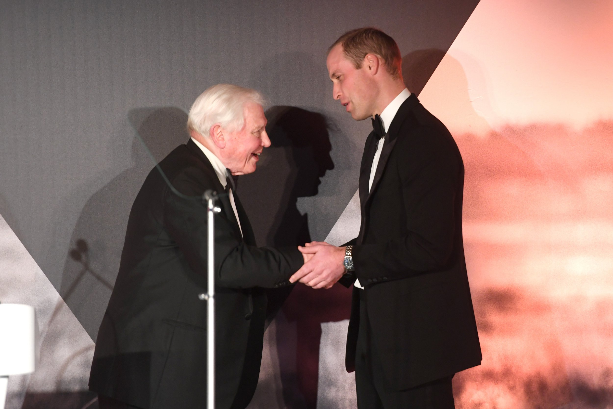 LONDON, ENGLAND - NOVEMBER 30: Prince William, Duke of Cambridge presents Sir David Attenborough an award for his services to wildlife during the Tusk Trust Awards at Victoria & Albert Museum on November 30, 2016 in London, England. (Photo by Stuart C. Wilson/Getty Images)
