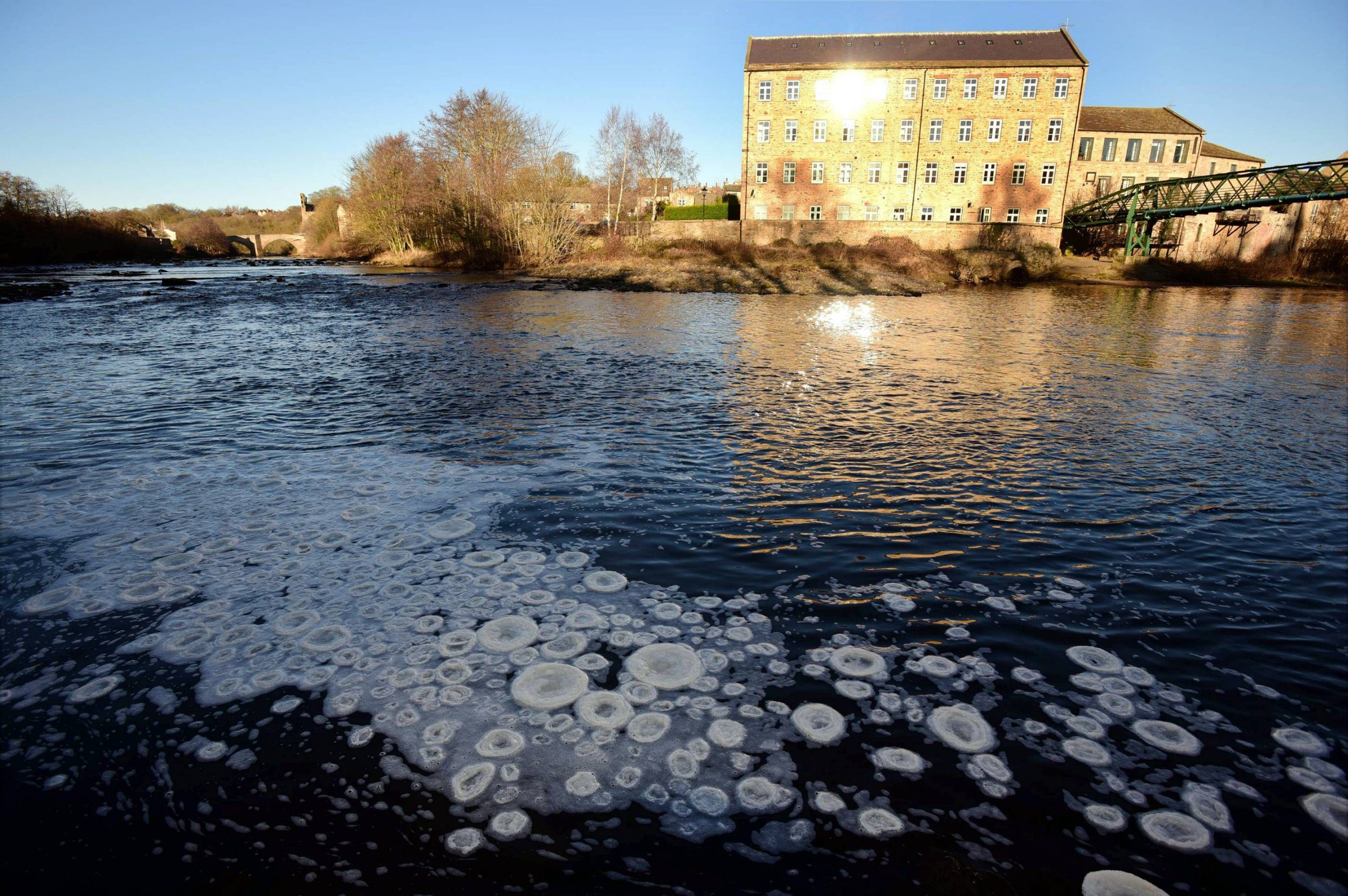 Dated: 23/01/2019 Rare 'ice pancakes' form on the fast flowing River Tees in Barnard Castle, County Durham this afternoon (WED), due to the sub-zero temperatures. Most frequently seen in the Baltic Sea and around Antarctica, this rare phenomenon sees pieces of foam turned into ice knock against each other as they freeze and grow, causing their edges to rounden. Small rims are then created on the edges as the knocking causes splashing water to freeze and join the rim.