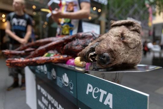 Peta Animals pitt street mall