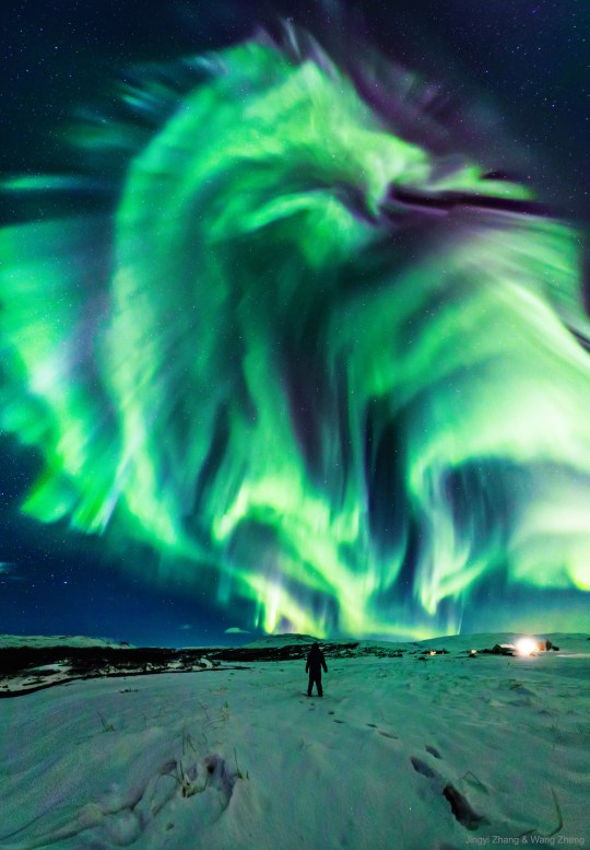 Nasa releases picture of mysterious 'dragon' aurora rearing its head in the sky