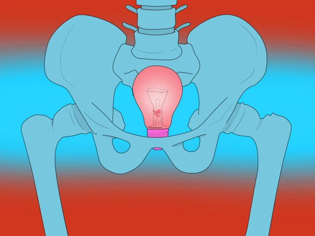 Getting Freaky: How would doctors actually remove a lightbulb from your anus or vagina?