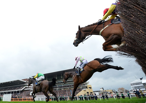 Which horses died at the 2019 Grand National and how many died last year?