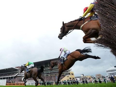 Cheltenham Festival likely to go ahead despite equine flu outbreak