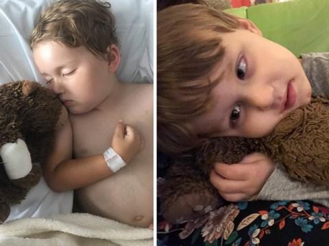 Good Samaritans help terminally ill boy, 4, find lost teddy bear