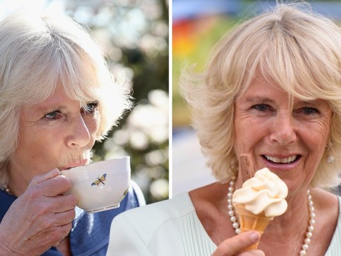 Camilla hits out at 'fad diets' and tells people to drink more milk