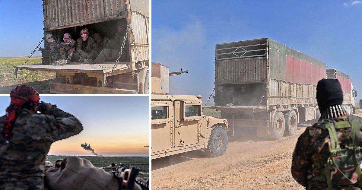 Battle against Isis enters its final stages as militants lose last village