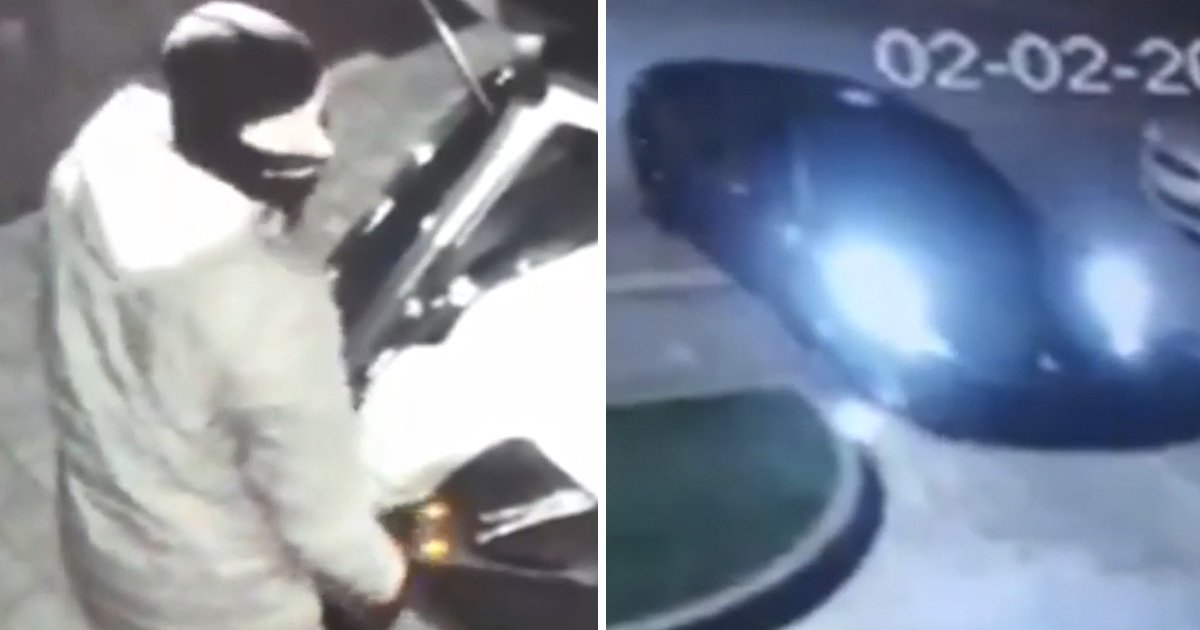 Burglars dump stolen Ferrari because they didn't know how to drive it