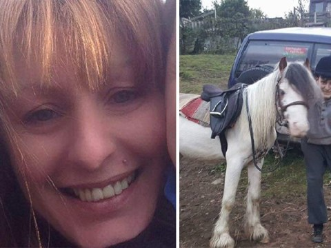 Couple behind horse's death complain that they've been getting abuse