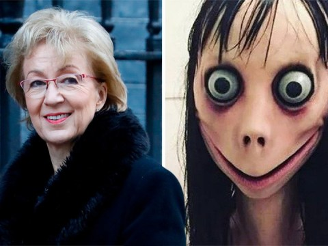 'No evidence' that Momo is threat to UK children, MPs say