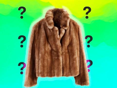Is it still socially acceptable to wear a fur coat in public?