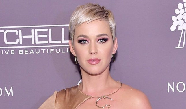 CULVER CITY, CA - NOVEMBER 10: Katy Perry poses at the 2018 Baby2Baby Gala Presented by Paul Mitchell at 3LABS on November 10, 2018 in Culver City, California. (Photo by Stefanie Keenan/Getty Images for Baby2Baby)