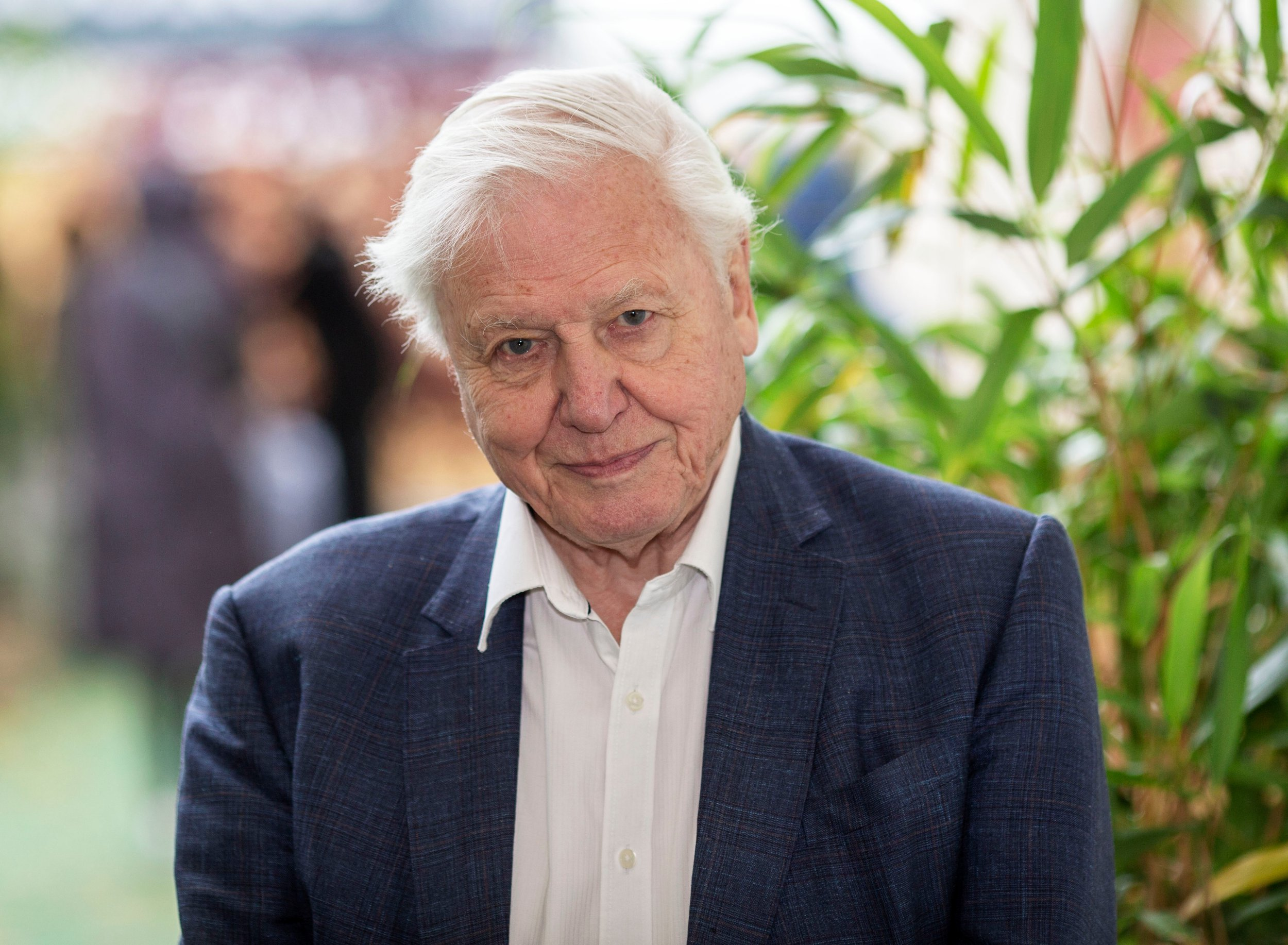 Sir David Attenborough makes desperate plea to end climate change ahead of Netflix's Our Planet and addresses future on the BBC