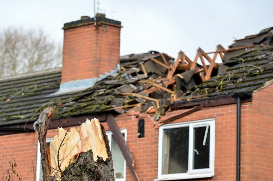 Home of Retired Melvin Toon, 68, from Bullwell in Nottingham. See SWNS copy SWMDtree: A grandfather who fought to get a ???dangerous??? tree felled for 30 YEARS is devastated - after it crashed into his house during Storm Erik. Melvin Toon. 68, says he has made ???countless??? calls to Nottingham City Council about the tree since moving into the property in 1985. He said the tree - which was around 25ft from his three-bedroom, semi-detached home in Bulwell, Nottingham - had always shaken heavily in the wind.