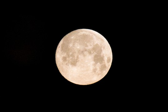 epa07380244 A full 'Supermoon' dominates the early morning sky over Chisinau, Moldova, 19 February 2019. The phenomenon can be seen in Moldova in the nights to the 19th and 20th February 2019. A so-called 'Supermoon' happens when the moon's closest approach (perigee) to Earth in its orbit coincides with a full moon phase letting it appear bigger and brighter than usual. EPA/DUMITRU DORU