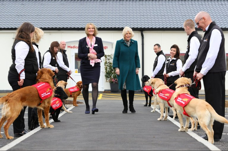 The Duchess of Cornwall walks along the guard of honour during a visit to the Medical Detection Dog's new centre at Milton Keynes. PRESS ASSOCIATION Photo. Picture date: Wednesday February 20, 2019. See PA story ROYAL Camilla. Photo credit should read: Aaron Chown/PA Wire