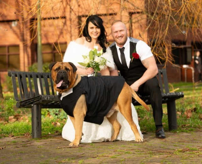 - Picture of Estelle Harris, 34, Danny, 31 and Bruce the Bull Mastiff on their wedding day TRIANGLE NEWS 0203 176 5581 // contact@trianglenews.co.uk A DOG lover brought her wedding forward by four months after she was told her Bull Mastiff had terminal cancer - and she wanted him to walk her down the aisle. Estelle Harris and her pet pooch Bruce go everywhere together and she describes him as ?her son with four legs.? Estelle, 34, and her partner Danny, 31, were due to get married in May, but when Bruce fell ill in December they decided to rearrange their big day. Bruce?s cancer hell began on December 4 when Estelle returned home from her job as a warehouse operative and noticed Bruce?s breathing was funny. *Full copy filed via the wires*