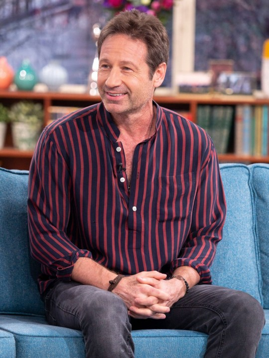 David Duchovny in the ...