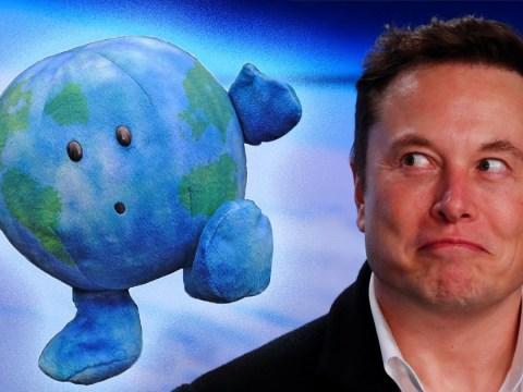 Elon Musk's SpaceX sparks bizarre craze for cute cuddly Earth teddies