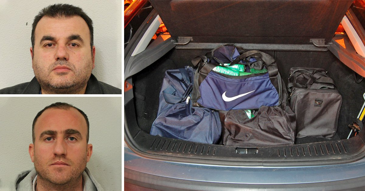 Cops find £8,000,000 of cocaine in back of Ford Focus