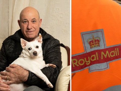 Couple left with £500 vet bill after 'postman kicked the dog'