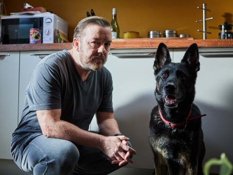 Ricky Gervais confirms After Life season 2 is in the works: 'I've never had a reaction like it'