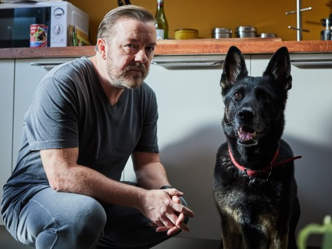 Ricky Gervais teases After Life season 2 release date as he hints Netflix show will be complete after Christmas