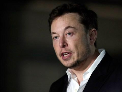 Elon Musk faces defamation trial over 'pedo guy' remark