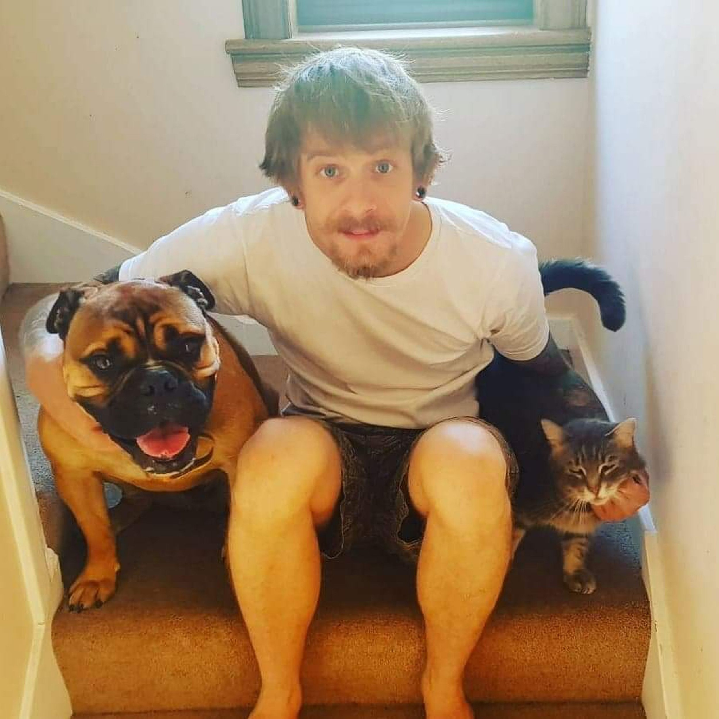 PIC FROM Kennedy News and Media (PICTURED: BEGBIE, MATT KENNEDY, 33, AND TAG) Two kind-hearted workmen raced over to assist a dog walker and revive her ???dead??? dog - only to discover the petulant pooch was staging a lie-down protest at not going on his favourite walking route. Professional dog walker Michele Bilsland had agreed to take Old English Bulldog Begbie on a shorter walk then usual last Friday afternoon due to the bad weather. Michele took Begbie, named after Robert Carlyle???s character in cult film Trainspotting, out of the cul-de-sac and turned left instead of right to take him on a quick walk around the block. SEE KENNEDY NEWS COPY - 0161 697 4266
