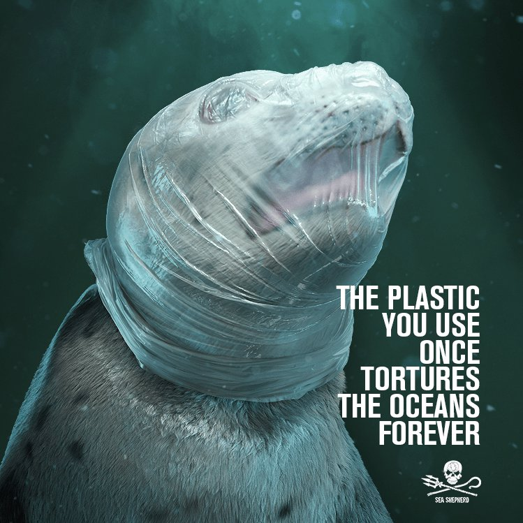 Sea Shepherd Uses Depictions of Tortured Animals to Fight Against Plastic in the Oceans https://seashepherd.org/2019/03/07/sea-shepherd-uses-depictions-of-tortured-animals-to-fight-against-plastic-in-the-oceans/