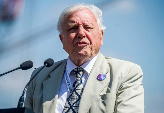 David Attenborough warns of 'catastrophic future' in climate change documentary