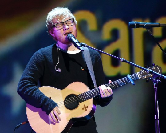 Ed Sheeran apologises to fans after leaving fans in rain storm following Disneyland concert cancellation