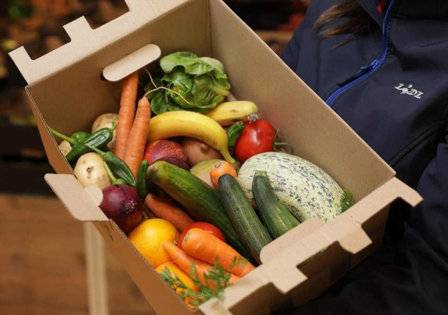 Lidl box of damaged food for ?1.50 Lidl 'Waste Not' Box of fruit and vegetables