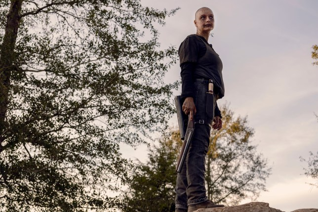 Who Died In The Walking Dead Season 9 Episode 15 Alpha