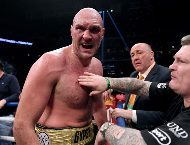 Tyson Fury shouts after a fight