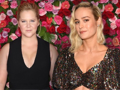 Captain Marvel's Brie Larson shares the love for 'sister' Amy Schumer