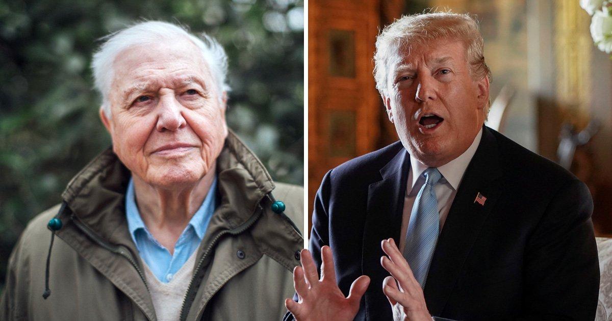 Sir David Attenborough's worrying prediction about Donald Trump